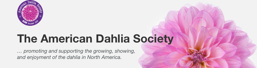 The American Dahlia Society